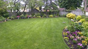 beautiful lawn - lawn irrigation system inspection fort worth
